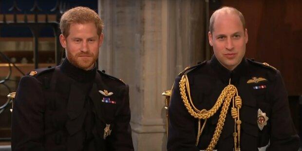 Harry i William/YT
