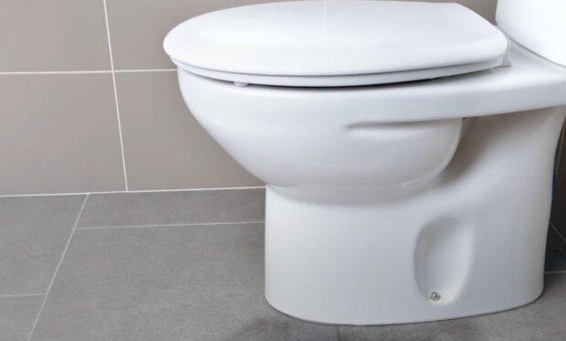 Toaleta/YouTube @WP