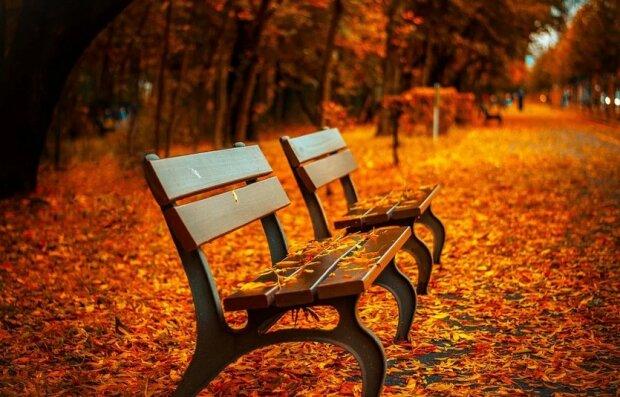 Jesień/screen Pixabay