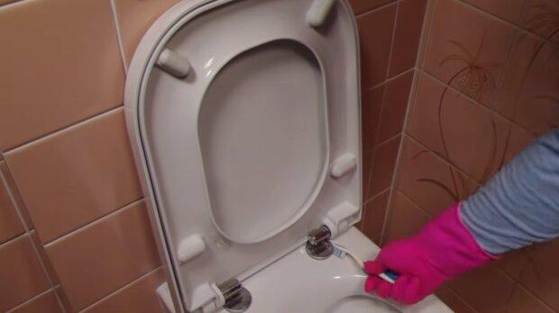 Mycie toalety. Źródło: Youtube Take Look