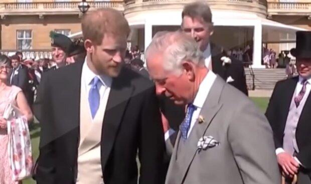 Książę Karol i książę Harry/YouTube @Dla Ciekawskich