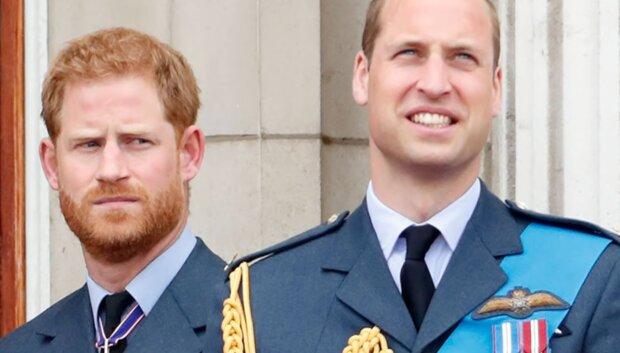 Książę Harry i książę William/YouTube @Dla Ciekawskich