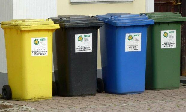 Segregacja śmieci/screen Pixabay