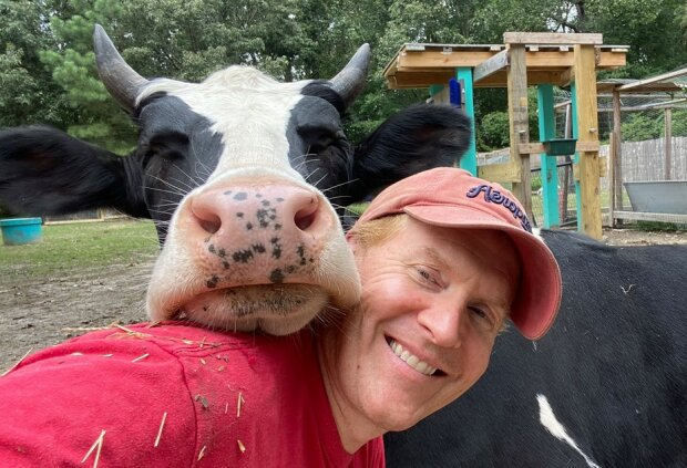 Krowa Jenna/screen Facebook @Life with Pigs
