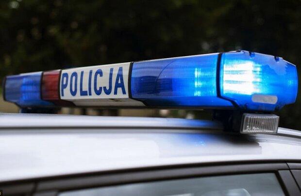 Policja/screen Pixabay