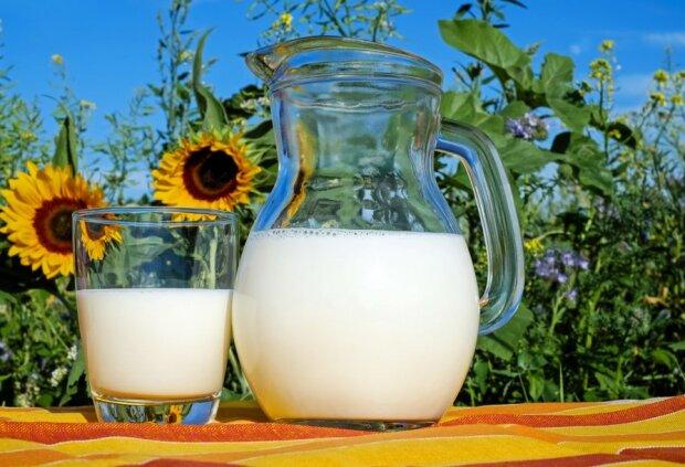 Mleko w ogrodzie/screen Pxhere